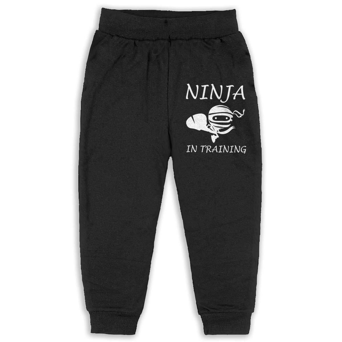 Ninja in Training 2-6T Boys Active Joggers Soft Pant