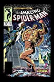 img - for Amazing Spider-Man Epic Collection: Kraven's Last Hunt (Epic Collection: the Amazing Spider-Man) book / textbook / text book
