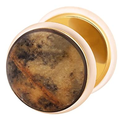 Dilatador Falso Piercing Plug Dorado, Pendiente, Piedra Net Stone: Amazon.es: Joyería