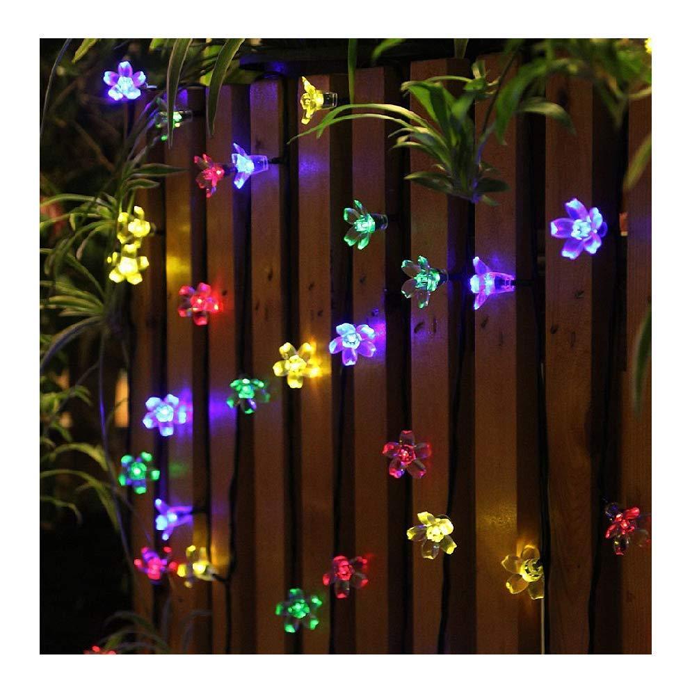 Panny Solare con 50 LED Panpany, Lungo 22 Piedi per il Giardino, Impermeabile e Decorativo, Perfetto per il Patio, Giardino, Casa, Alberi di Natale L10E0601
