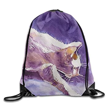 Amazon.com  Drawstring Backpack Gym Bag Travel Backpack Artwork Cat ... 438c8c46c379