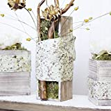 Wood Planter Box Set, Rustic Whitewash, Country House Charm, Plastic Liners, Long Rectangle, 12 x 4 Inch, Wedding Decor and Floral Arrangements, Natural Centerpiece, Wooden (Beige), (Set of 2)