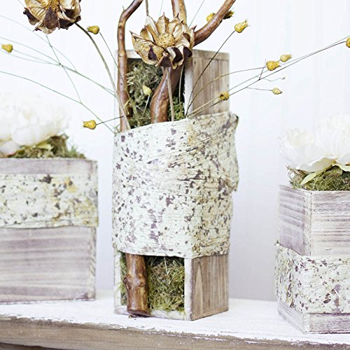 Review Wood Planter Box Set,