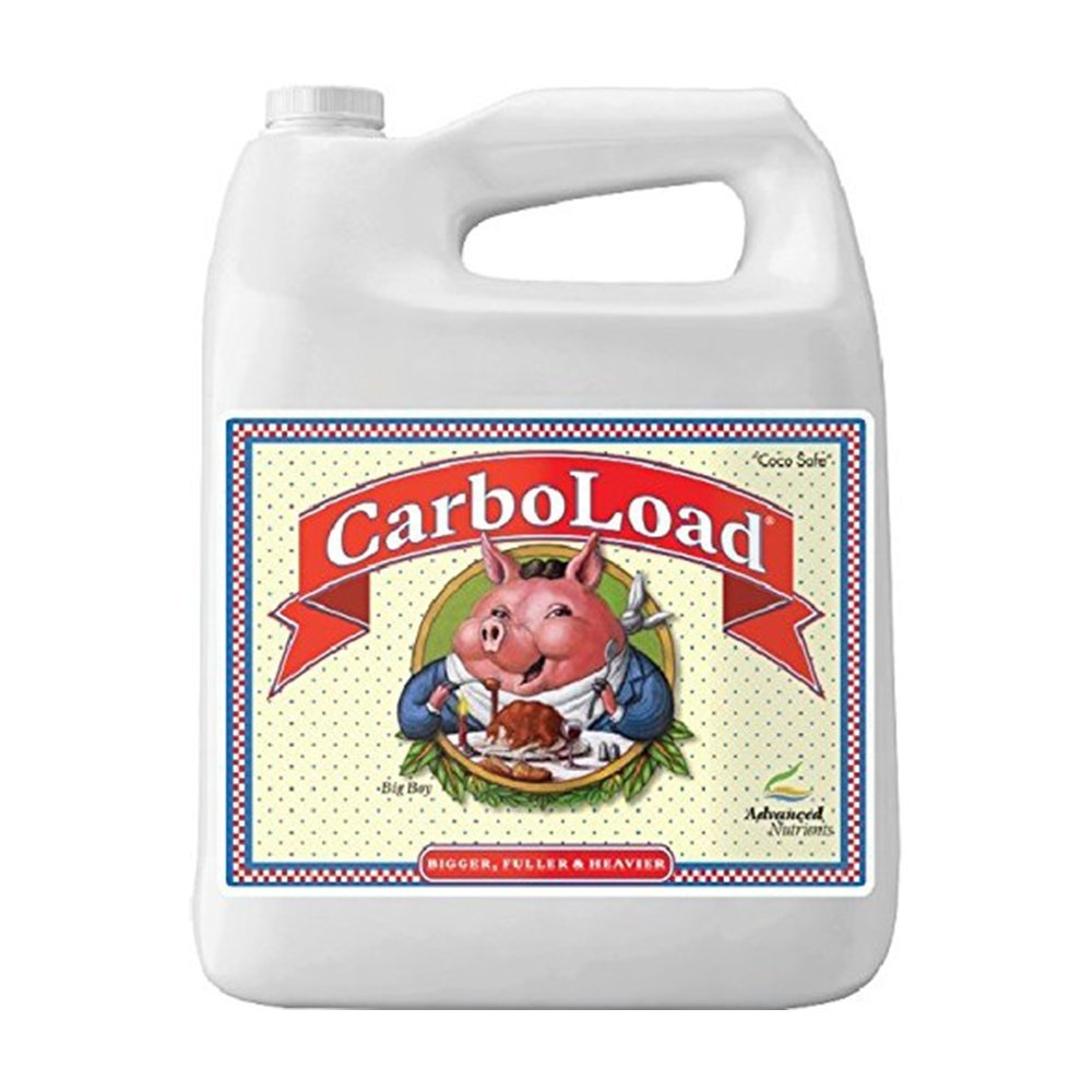 Discussion on this topic: How to Carbo Load, how-to-carbo-load/