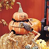 Joe Spencer Gourdy Pumpkin Fabric Figurine with Hand-Painted Face