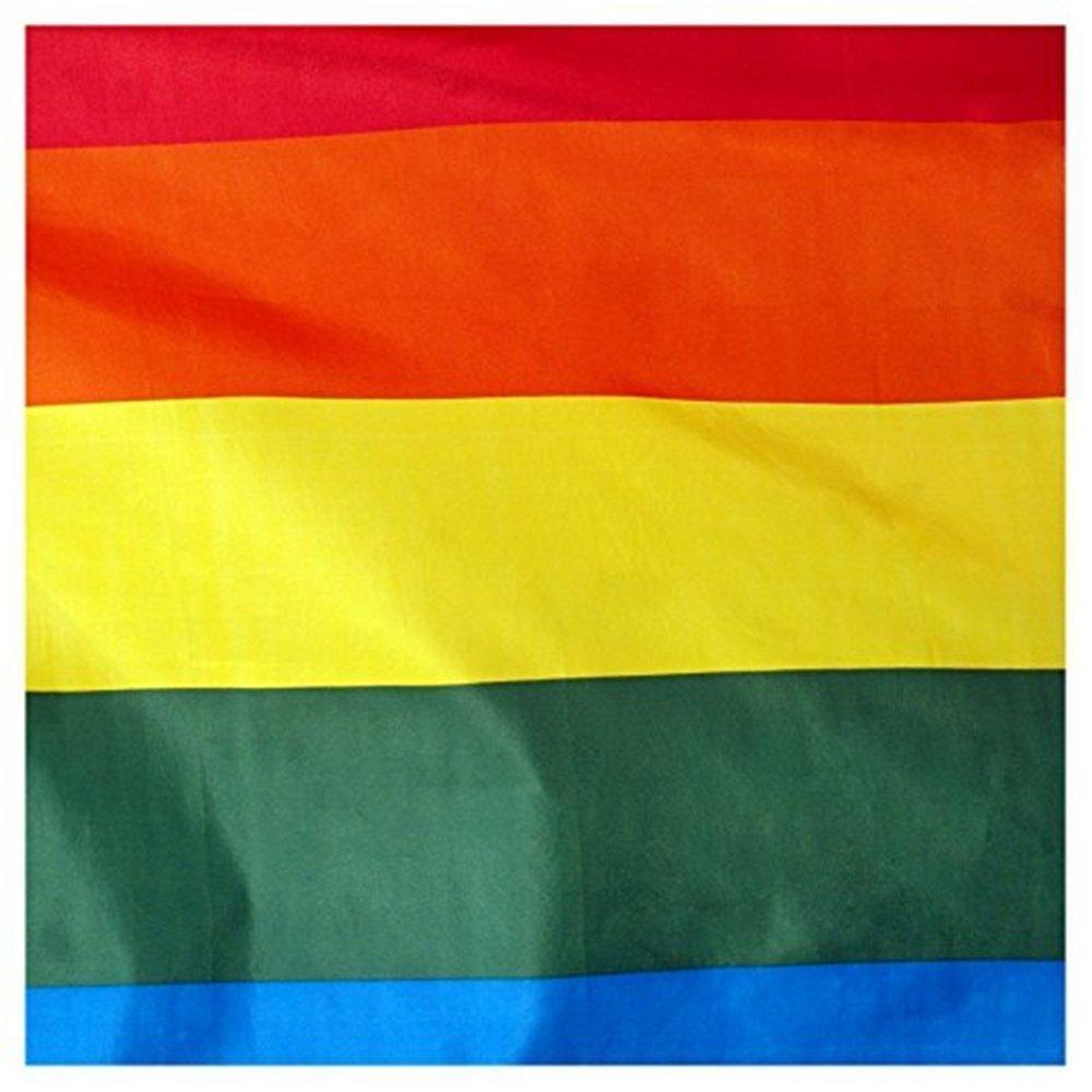 Romote Regenbogen-Frieden Flaggen Banner LGBT Pride Flag Lesben ...