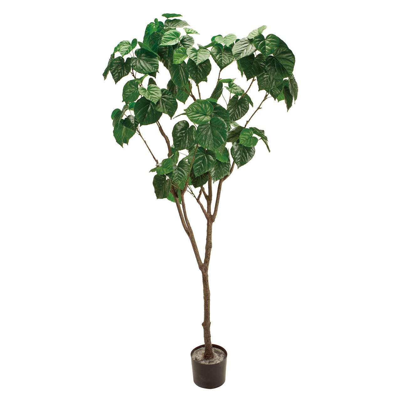東京堂 造花 グリーン 幅 約60×高さ 約180cm 鉢径 約18×高さ 約14.5cm MAGIQブランド フィドルツリーポットL FG001269 B07PN474P6