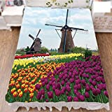 Bed Skirt Cover 3D Print,of Netherlands Farm Country Heritage Historical,Fashion Personality Customization adds Color to Your Bedroom. by 90.5''x96.5''