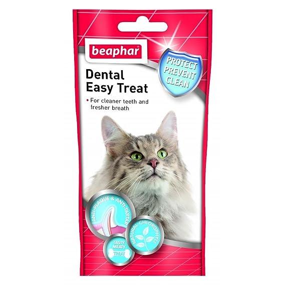 Beaphar - Aperitivo dental para gatos (35 g/Variado): Amazon.es: Ropa y accesorios