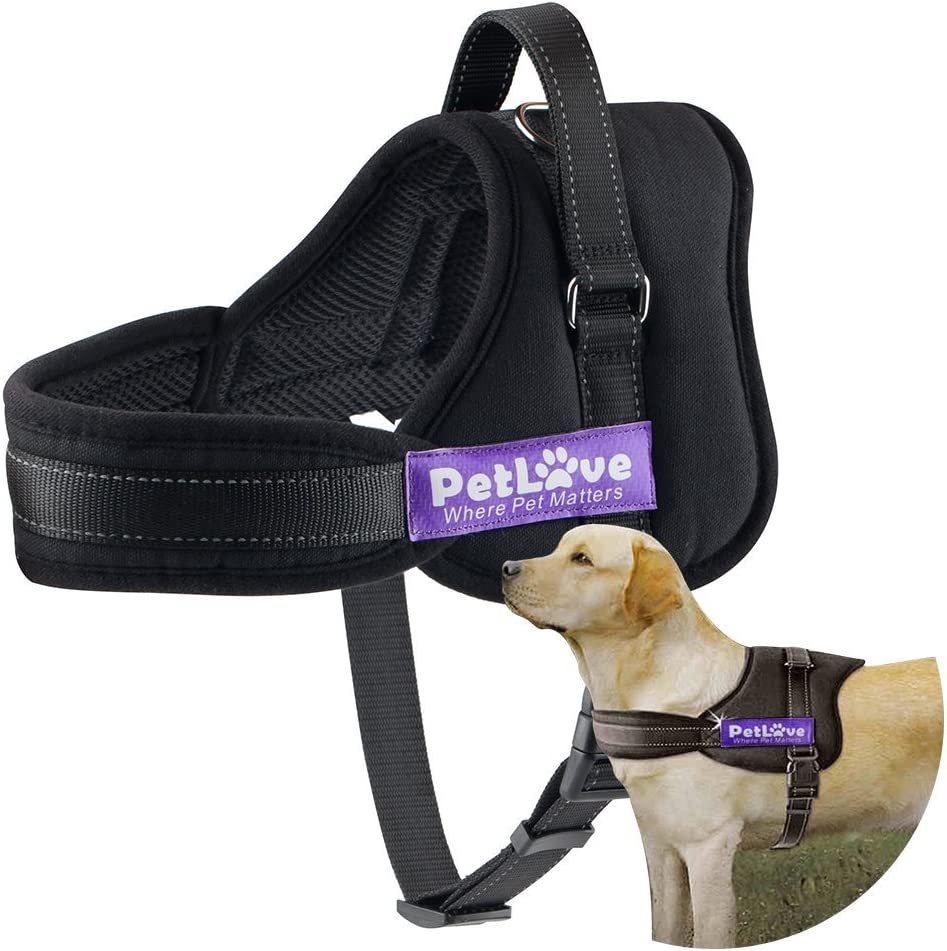 Top 10 Dog Harnesses | 2020 Updated Review 4