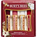 Burt's Bees Beeswax Bounty Assorted Fruit Lip Balm Holiday Gift Set, 4 Lip Balms – Wild Cherry, Pink Grapefruit, Coconut & Pear and Strawberry