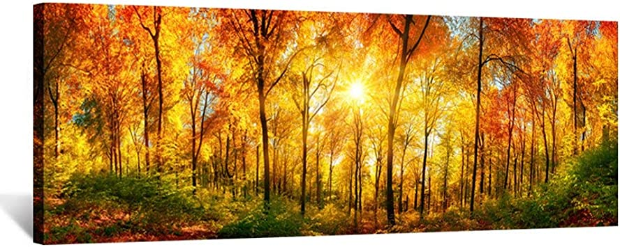Amazon Com Kreative Arts Large Wall Art Autumn Scenery Canvas Prints Panorama Forest In Vibrant Warm Colors Sun Shining Through Leaves Pictures Hd Printed Painting Framed Art Works Home Walls 55x20in Posters