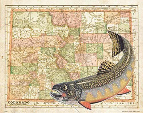 Apple Creek Colorado State Map Brook Trout Unlimited Fly Fishing Art Print 11x14 Rainbow Brown Cabin Decor Pictures