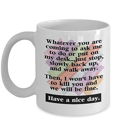 Amazoncom Best Funny Have A Nice Day Secretary Coffee Tea Gift