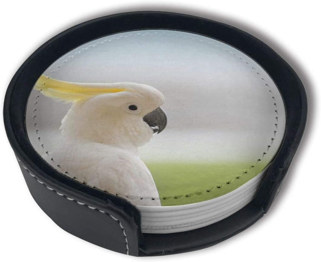 6PCS Suitable for Home and Kitchen LKJDAD White Parrot Premium PU Leather Coasters Drink Round Coasters with Holder Sets