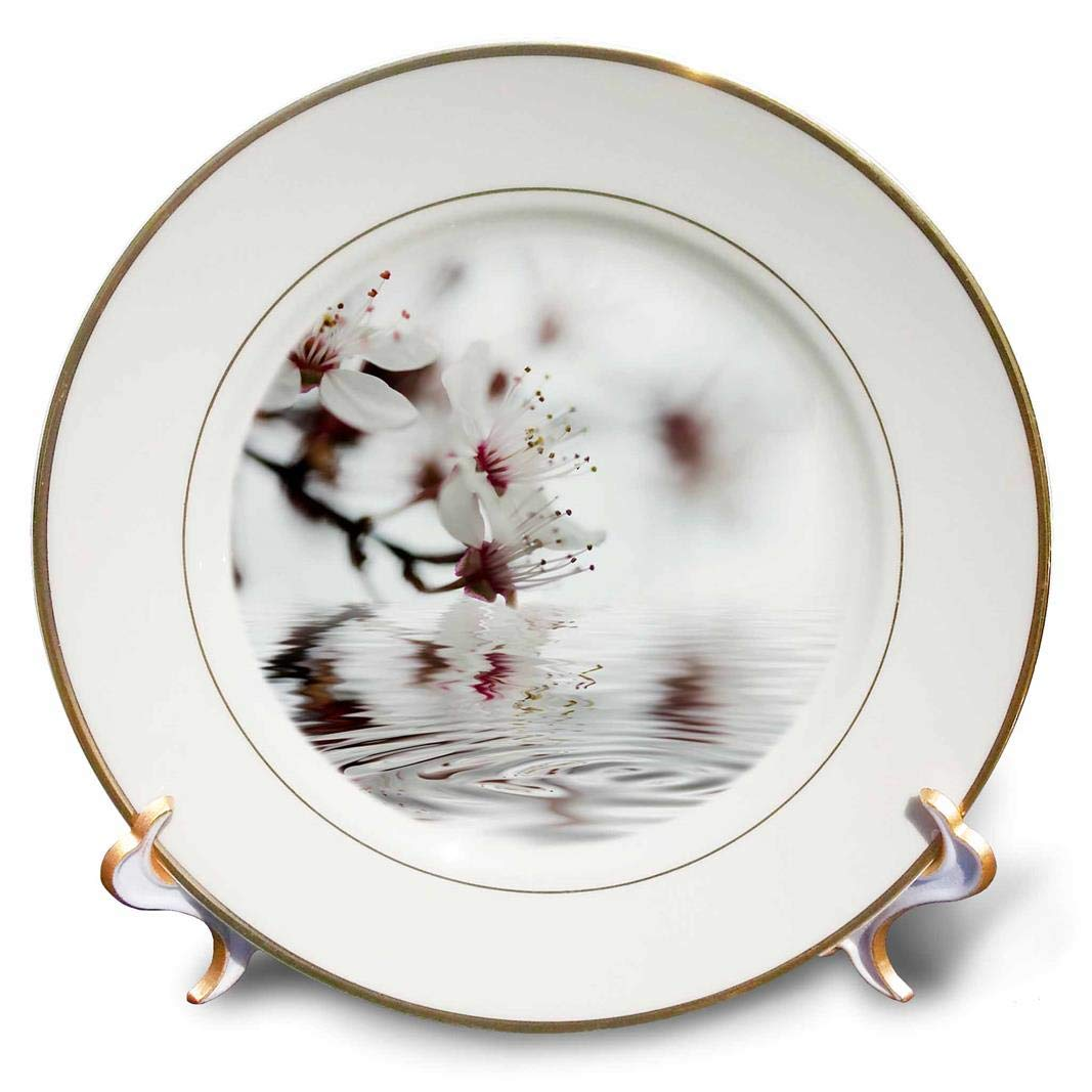 3dRose Cherry Blossom and Reflecting Water Close Up Photography Porcelain Plate 8