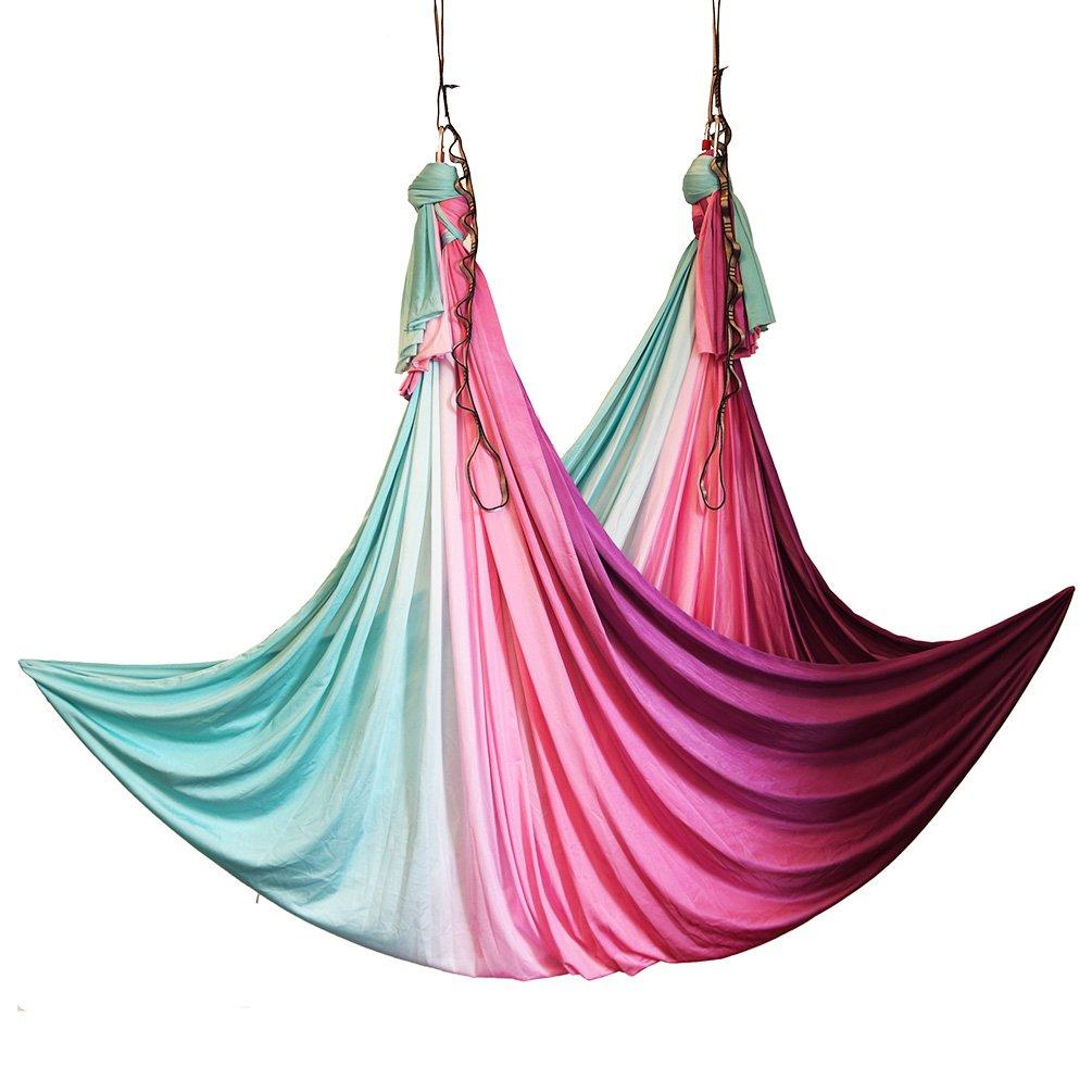 wellsem Aerial Yoga Hammock Aerial Pilates Silk Yoga Swing Set Include Carabiners Daisy Chain, Pose Guide 5.5 Yards Set (Fairy)