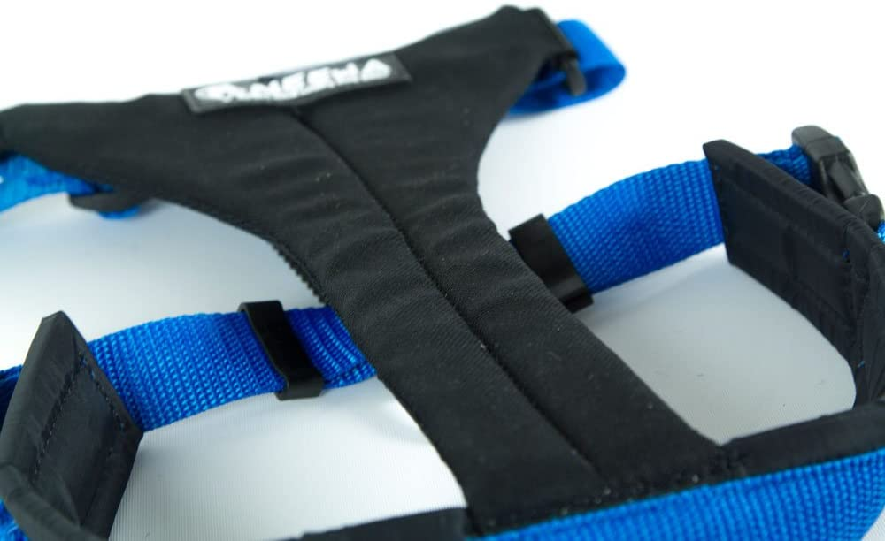 Neewa 8033087539981 Running arn/és Azul Medium