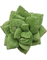 Succulent Cactus Décor Pillow for Green or Garden Lovers Green Nursery Living Room Accent 3D Shape to Create Your Life Size Lush Home Terrarium - Olive Green