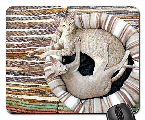 (Mouse Pads - Cat Kitten Siamese Cat Cozy Blanket Stripes)