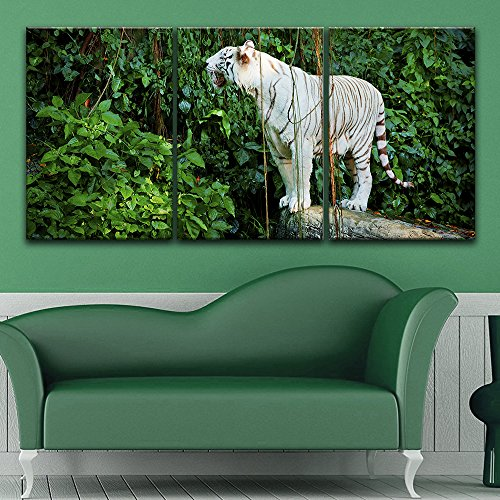 3 Panel White Tiger in the Forest x 3 Panels