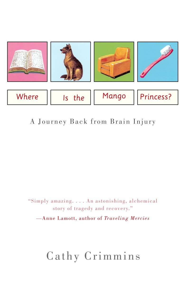 Where is the Mango Princess? A Journey Back from Brain Injury