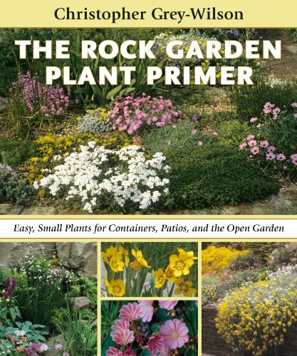 Cheap  The Rock Garden Plant Primer: Easy, Small Plants for Containers, Patios, and..
