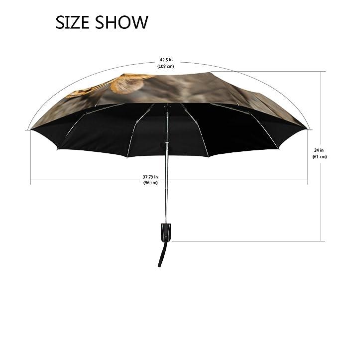 Amazon.com : Tiger Pattern Print Lightweight UPF 50+ Anti-UV Parasol Waterproof Windproof 3 Folds Auto Open Close Umbrella : Sports & Outdoors