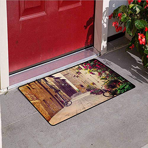 (Jinguizi Cityscape Inlet Outdoor Door mat Street in Pienza Tuscany Italy with Hanging Basket Plants Flowers Bicycles Picture Catch dust Snow and mud W23.6 x L35.4 Inch Red Green)