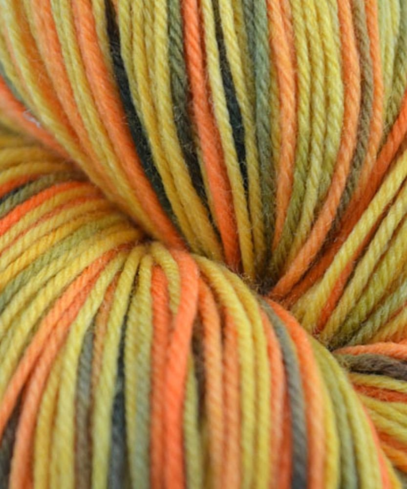 Amazon.com: Cascade Yarns Heritage Paints [Forest]