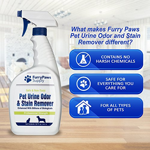 Dog Urine Carpet Stain Removal: Pet Urine Odor And Stain Remover 32 Oz
