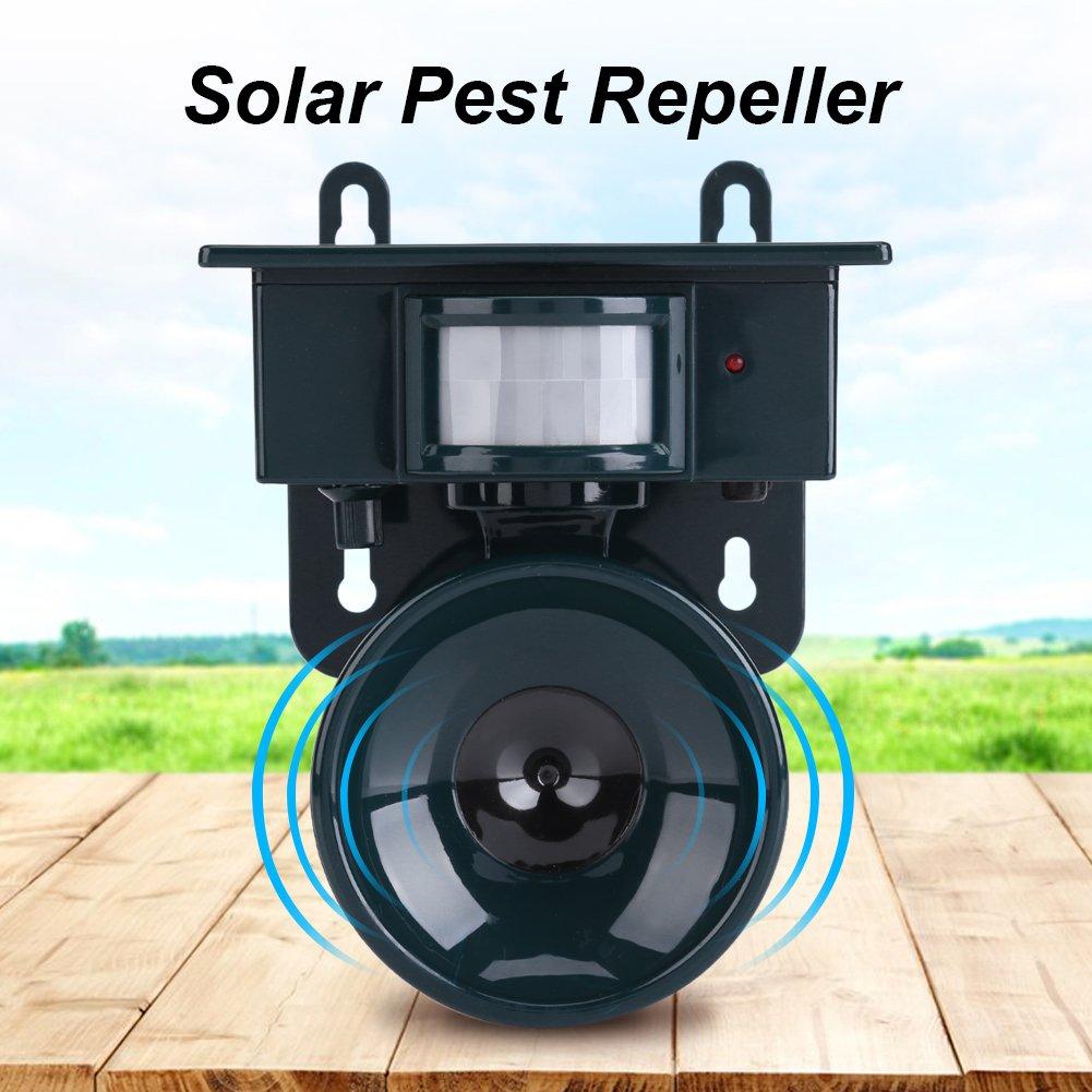 Solar Powered PIR Motion Sensor Ultrasonic Pest Repeller Bird Dog Cat Fox Mouse Chaser by Haofy