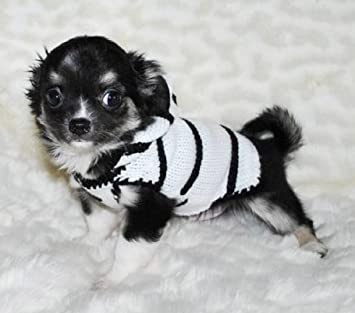 Amazoncom Zebra Dog Sweater Costume Teacup Dog Clothes Small