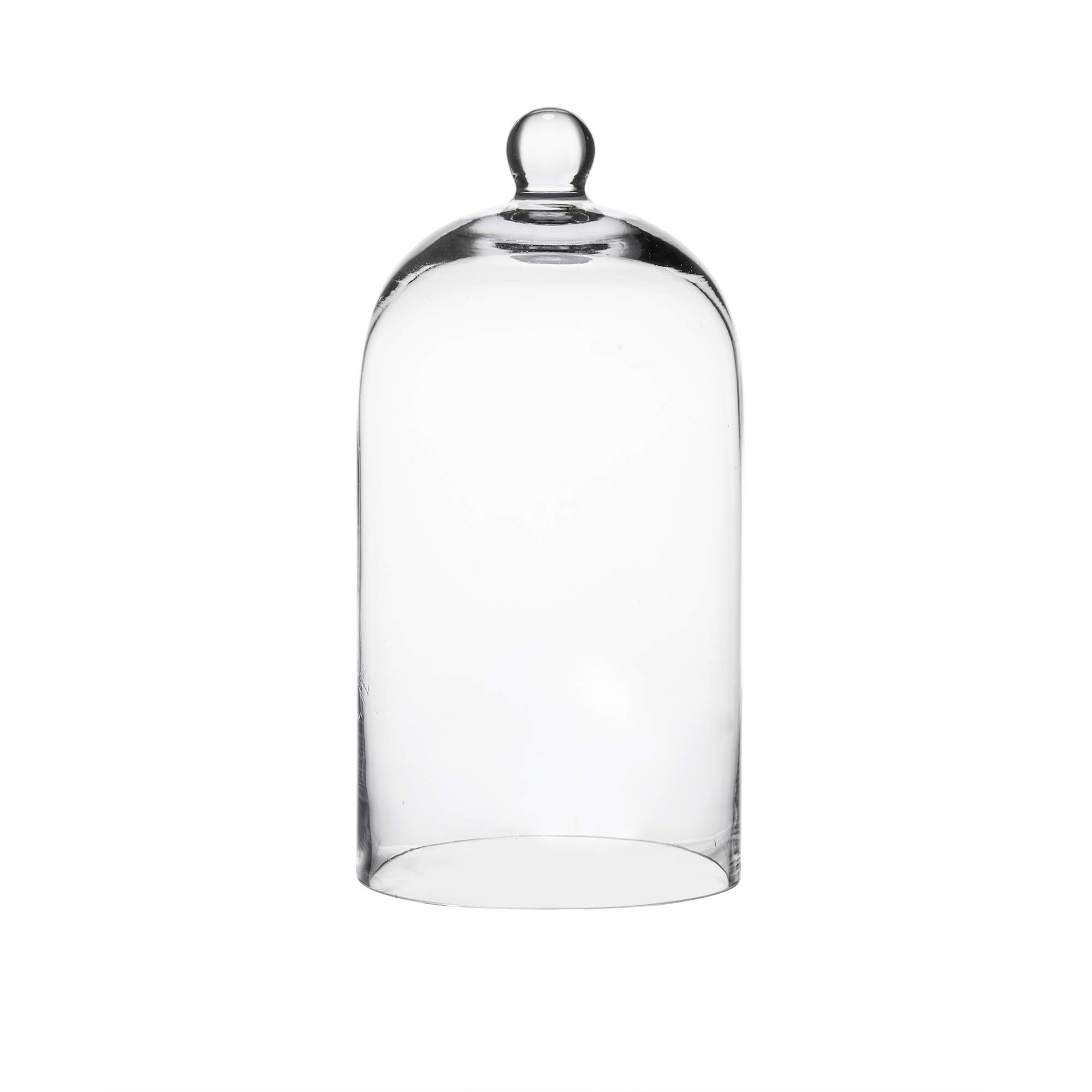 Whole Housewares Clear Glass Cloche Bell Jar - Glass Display Dome by Whole Housewares
