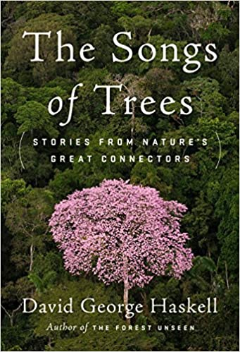 U Torrent Descargar The Songs Of Trees: Stories From Nature's Great Connectors Gratis Formato Epub