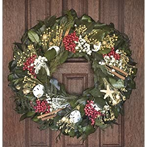 61DALaTiwDL._SS300_ 70+ Beach Christmas Wreaths and Nautical Wreaths