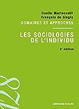 Les sociologies de l'individu : Domaines et approches
