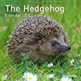 The Hedgehog Calendar 2020