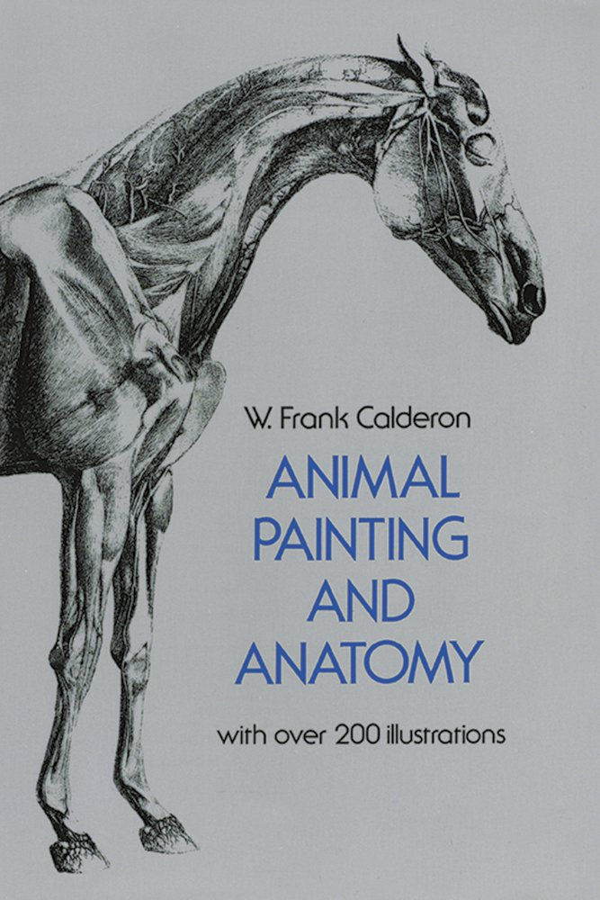 Animal Painting And Anatomy Dover Anatomy For Artists W Frank