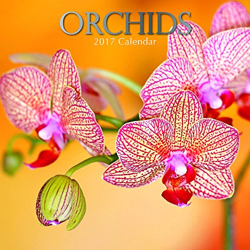 "Beautiful Floral Photographs - Orchids 2017 Monthly Wall Calendar, 12"" x 12"""