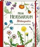 Mein Herbarium: Blütenzauber: Gartenpflanzen sammeln und bestimmen