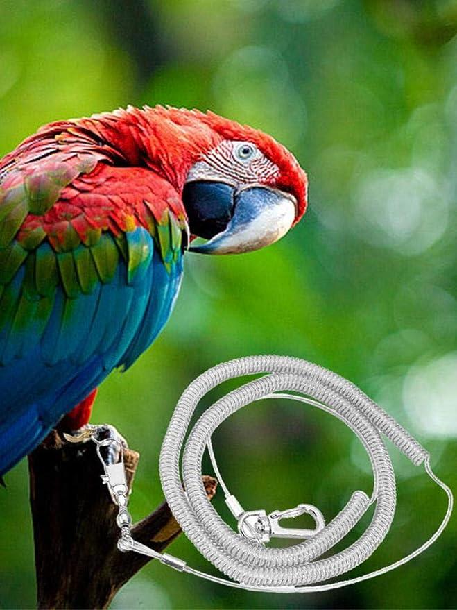 xiliary Arnés para pájaros Parrot Cuerda de entrenamiento anti ...