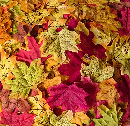 Fall Leaf Crafts (Bassion 1000 Pcs Assorted Mixed Fall Colored Artificial Maple Leaves for Fall Thanksgiving Decoration, Weddings, Events and)
