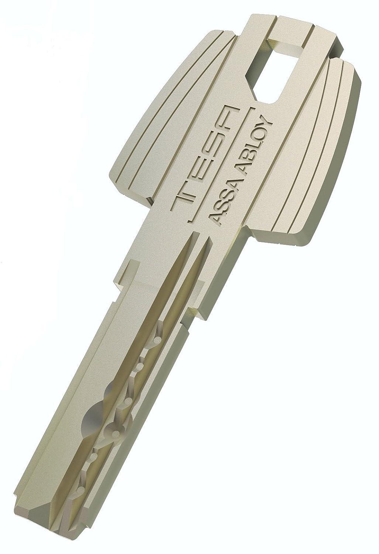 Tesa Assa Abloy T6553050N Cilindro de Leva Larga Niquelado 30x50 mm: Amazon.es: Bricolaje y herramientas