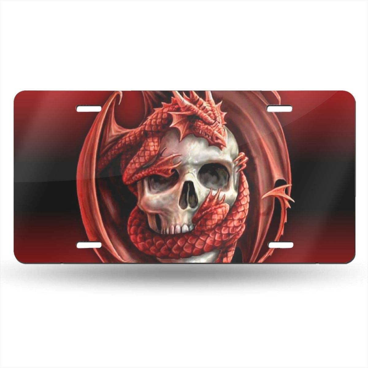 Miniisoul Wall Decoration License Plate Personalized Front License Plate Skull Dragon Customized USA Car Tag 6 X 12 Aluminum License Plate