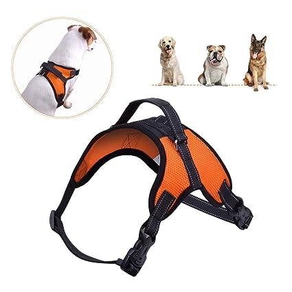 Amazon.com : PERSUPER Dog Harness Adjustable Soft Mesh - No Choke No