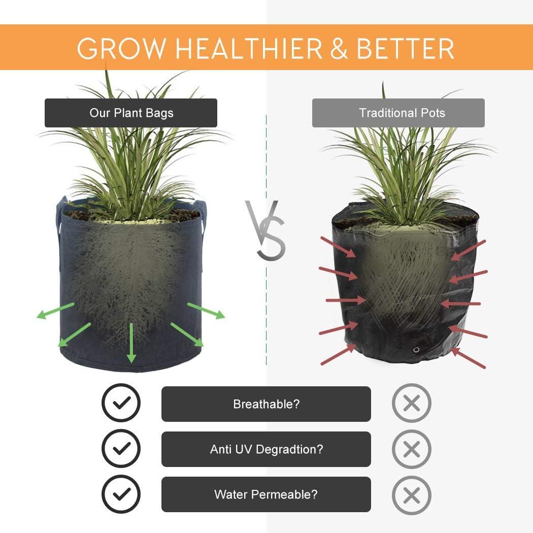 Ihoming Pots de Fleurs Paquet de 5 3 gallons de Plantes en Tissu Non tiss/é Respirant cultiver des Sacs avec poign/ées et Gants de Jardinage