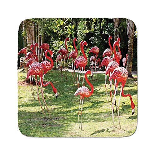 Cozy Seat Protector Pads Cushion Area Rug,Flamingo,Flamingo Bird Model in the Garden in Vibrant Colors Under Sunlight Shadows,Pink and Green,Easy to Use on Any Surface