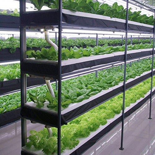 House Plant Grow Light: JandCase Full Spectrum White Light LED Grow Light Tubes, 2