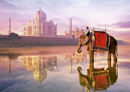 SiJOO Spot España Educa Imported Puzzle Jigsaw 1000 Piezas 16756 Elefantes Frente al Taj Mahal: Amazon.es: Hogar